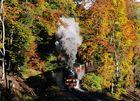 99-222 Autumn colour.....