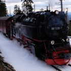 99 7235-7 in voller Fahrt zum Brocken (Brockenbahn)