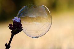 99 Luftballons... waren es nicht.. Seifenblase