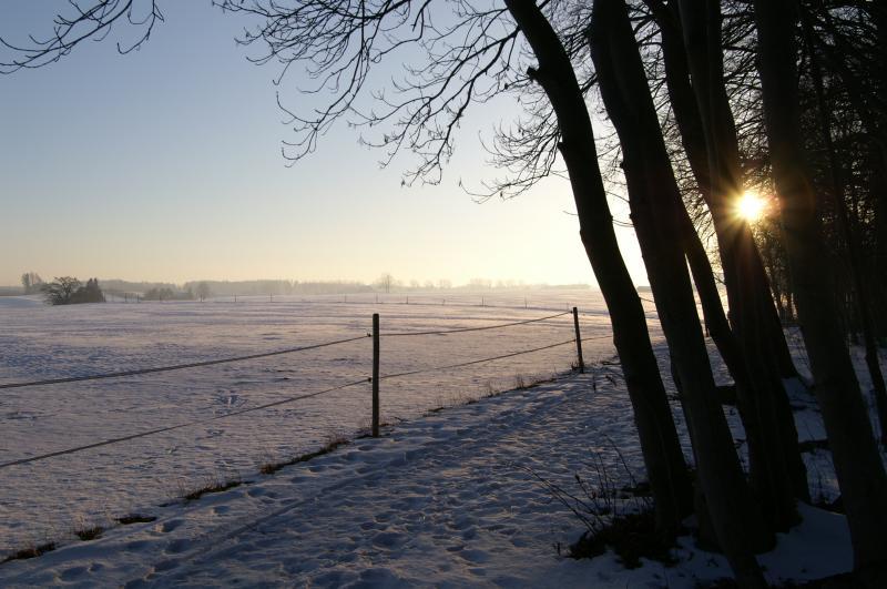 9live.. wo ist die Sonne im Bild... ruft an... :-)