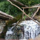 a beauty of Bulgaria