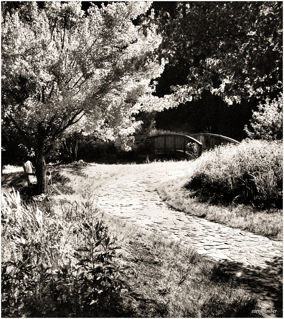 A Bench, a Bridge, and a Winding Path