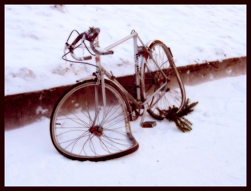 A bike of Salvador Dali