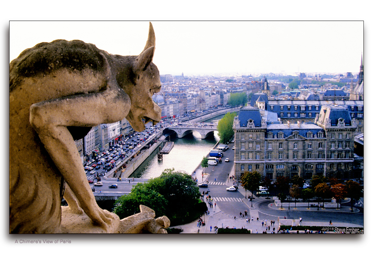 A Chimera's View of Paris