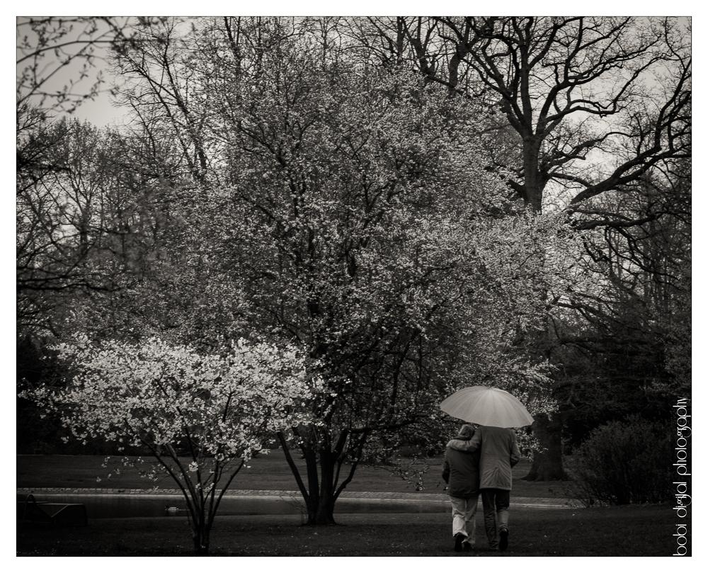 ..:: a couple in rain ::..