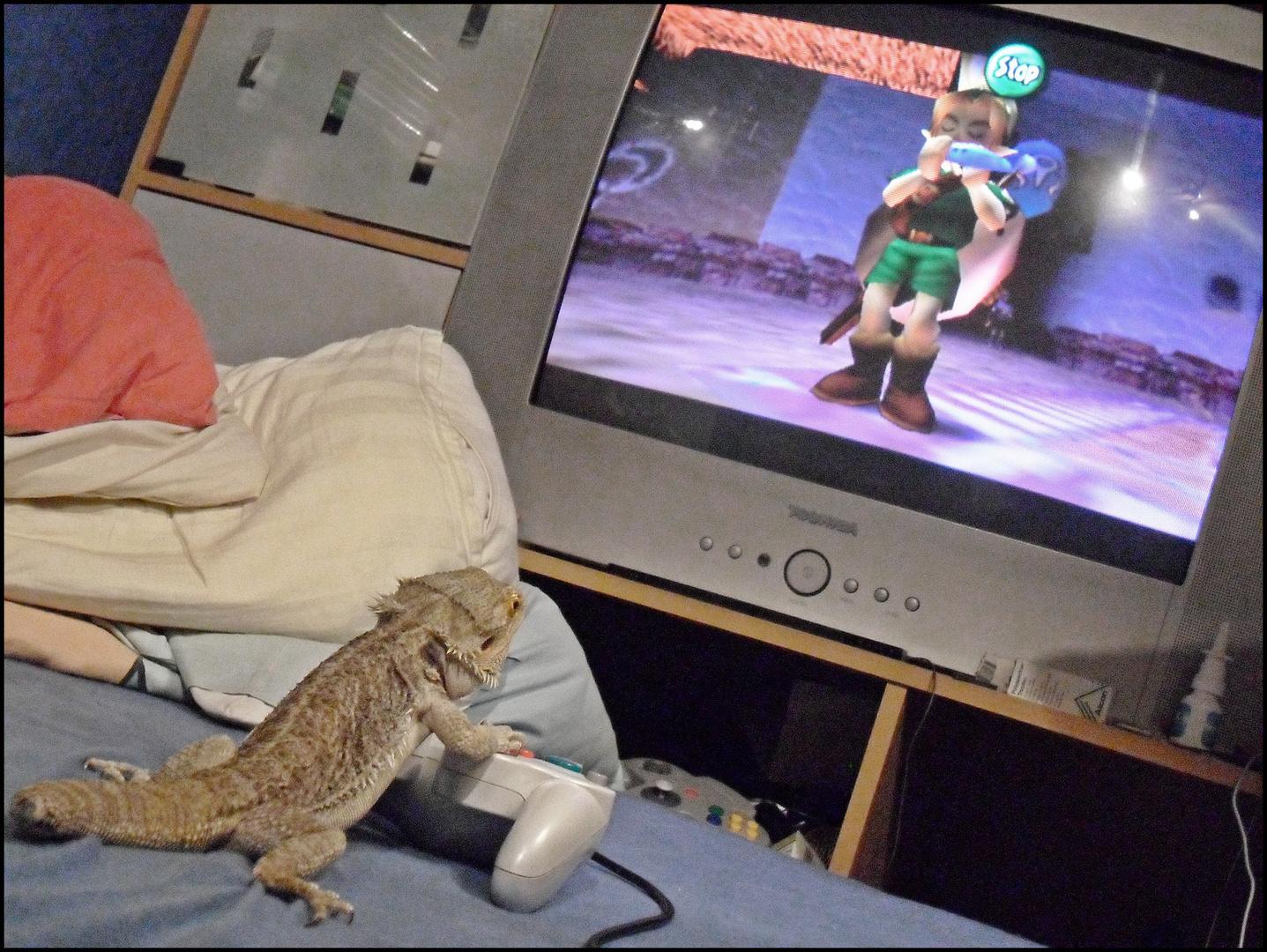 A dragon's Ocarina-Play