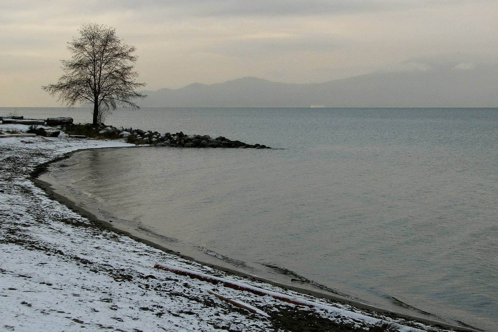 A fine Dusting of Snow (2)