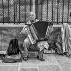 A French Accordion Player