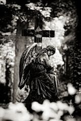 a guardian angel is what we all need from time to time....
