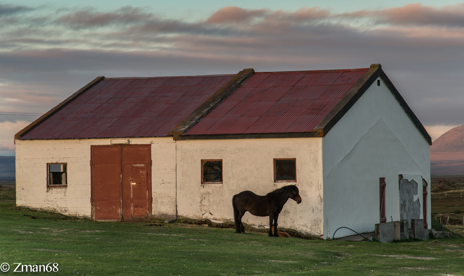 A Horse and a Barn