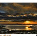 A l'aube sur le Lac du Der