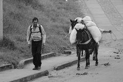 A lomo de mula con mi carga de café