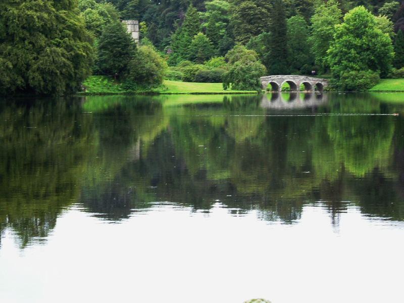 A lovely reflection