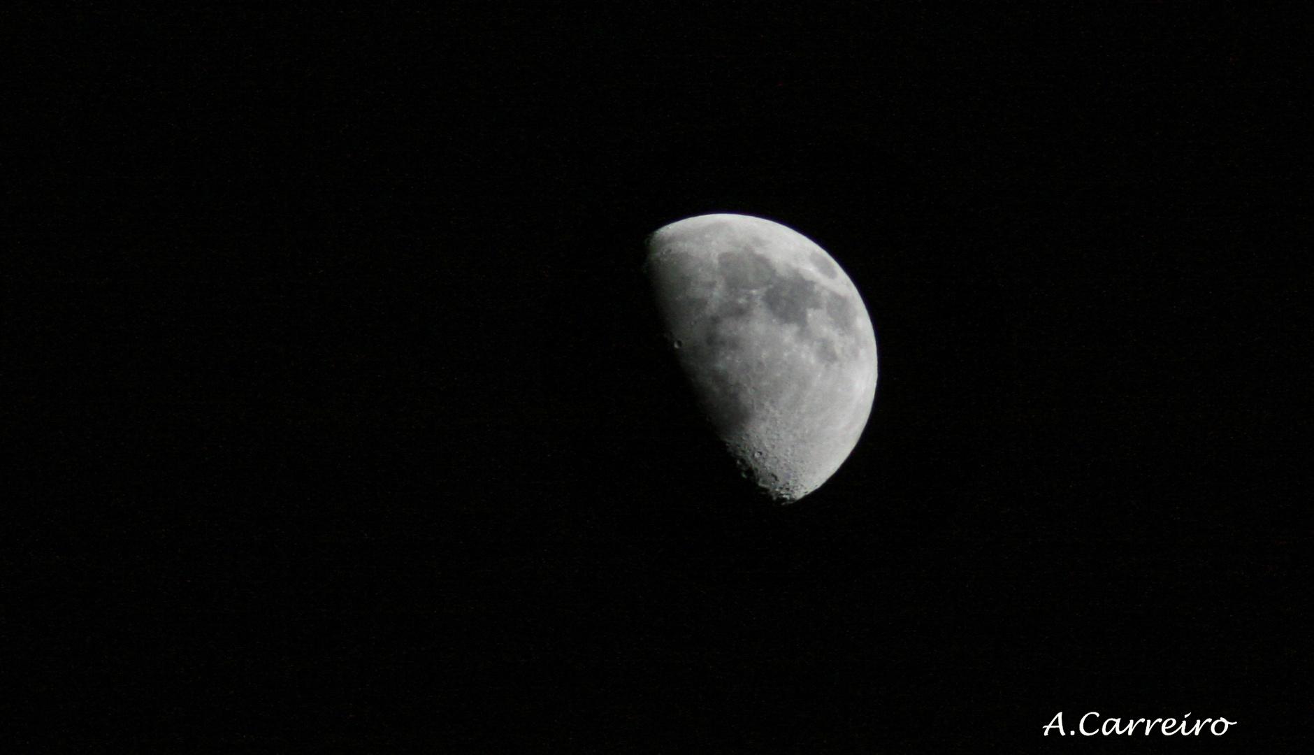 A Lúa Galega.