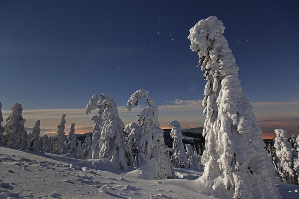 """A Moonlit Winter Night"""