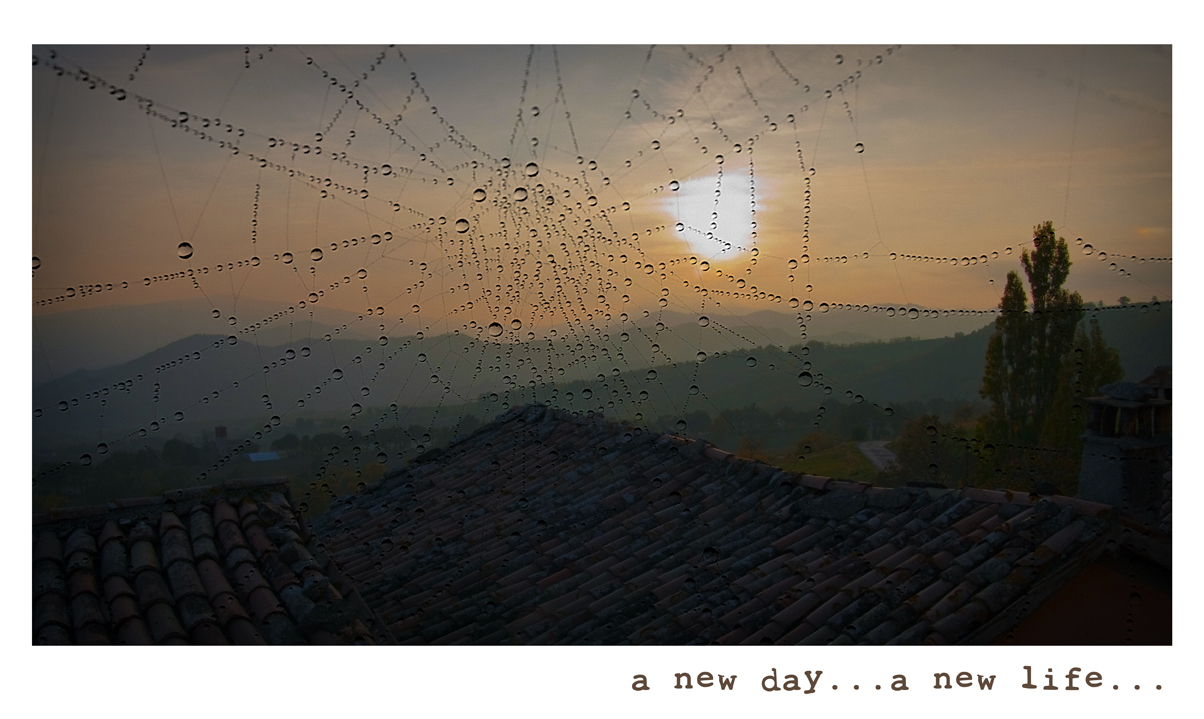 a new day...a new life...