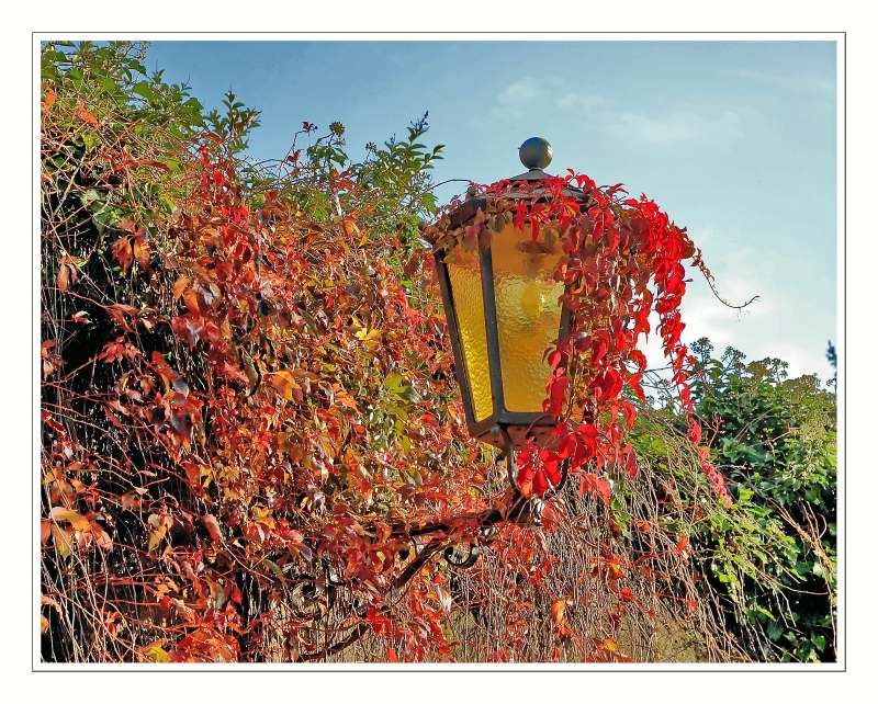 ... a old outdoor lamp in the....