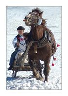 A one-horse open sleigh
