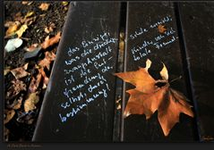 A Park Bench in Autumn