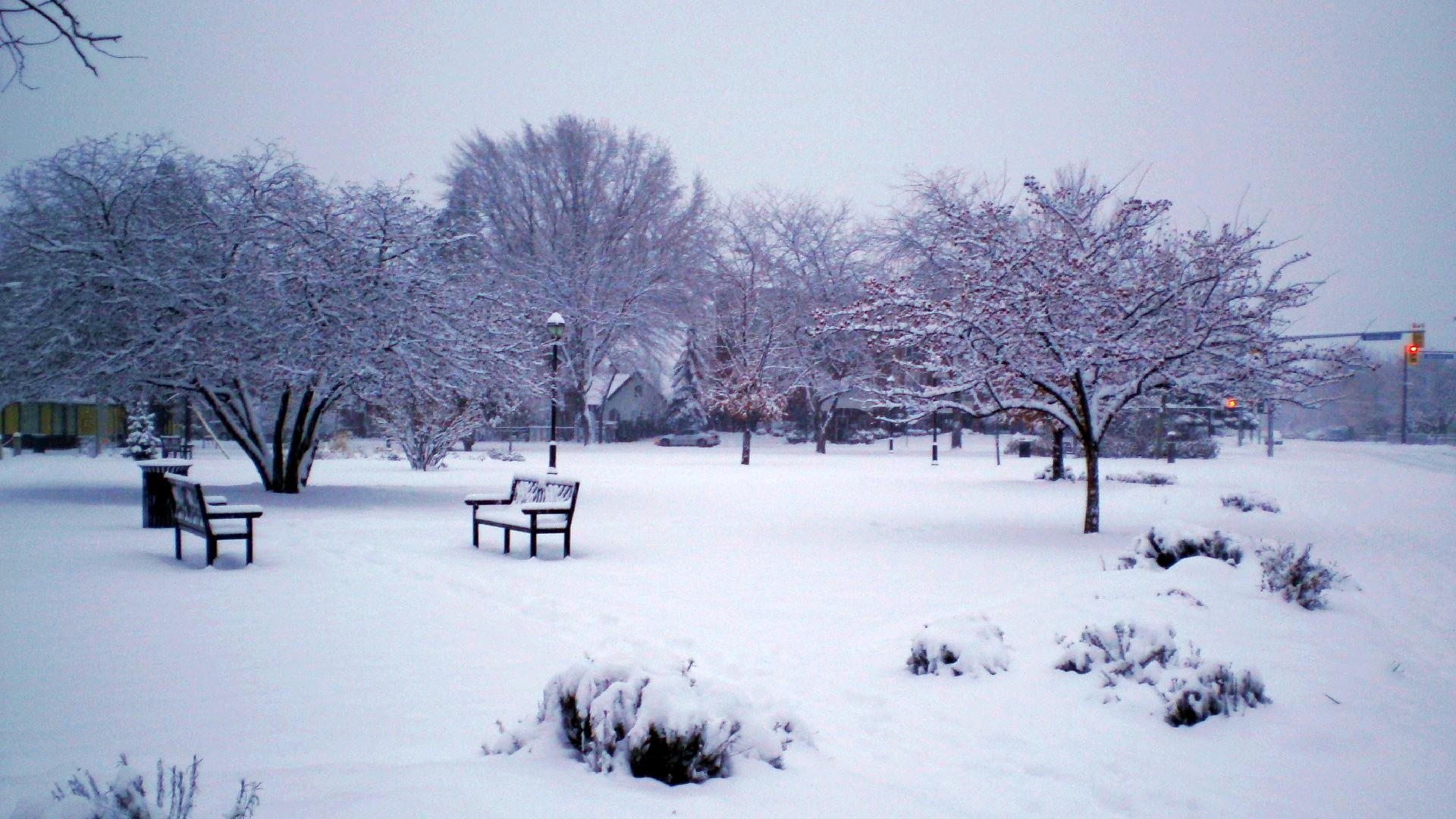 A park in Kelowna, BC, Canada, after a snowfall.