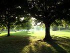 A Passeggio no Hyde Park...Londra
