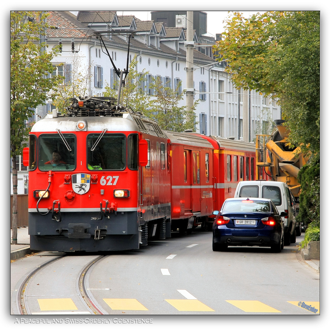 A Peaceful and Swiss-Orderly Coexistence