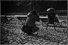 A PHOTOGRAPHER IN THE ROYAL GARDENS