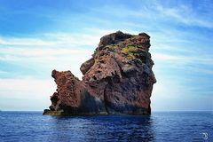 A proximité de Scandola (Corse du Sud)