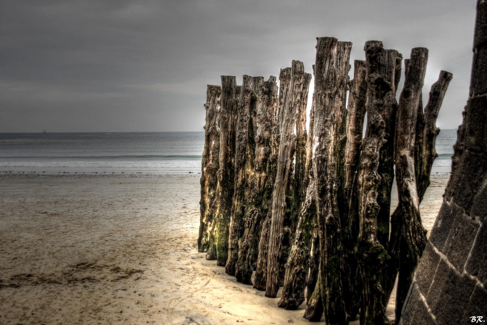 à regarder la mer (3)