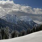 A snow paradise...