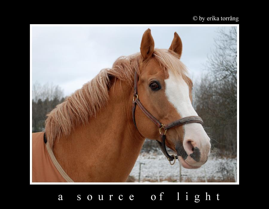 A source of light