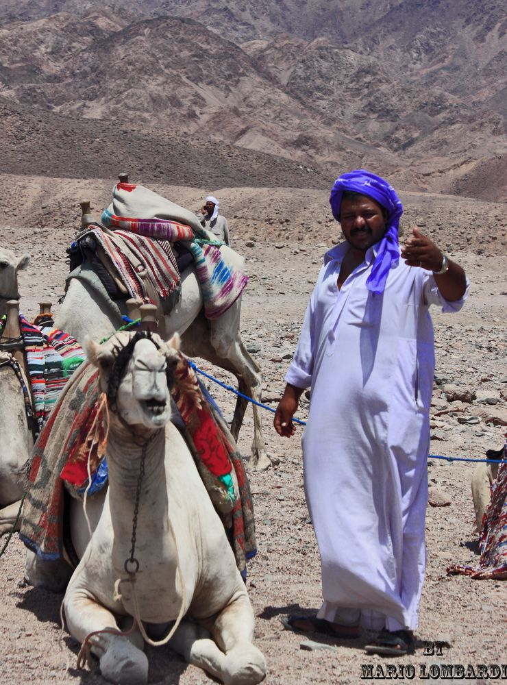 a spasso con i beduini