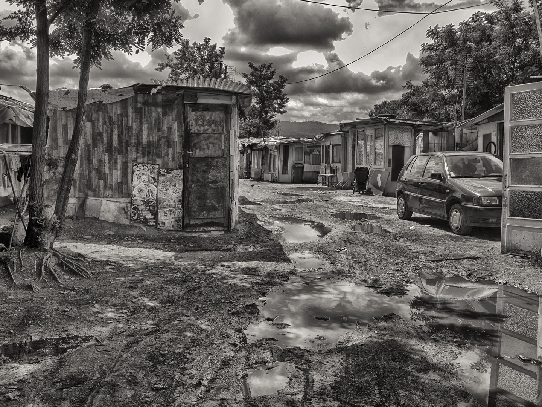 A Street Corner Named Desire