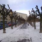 A street in winter