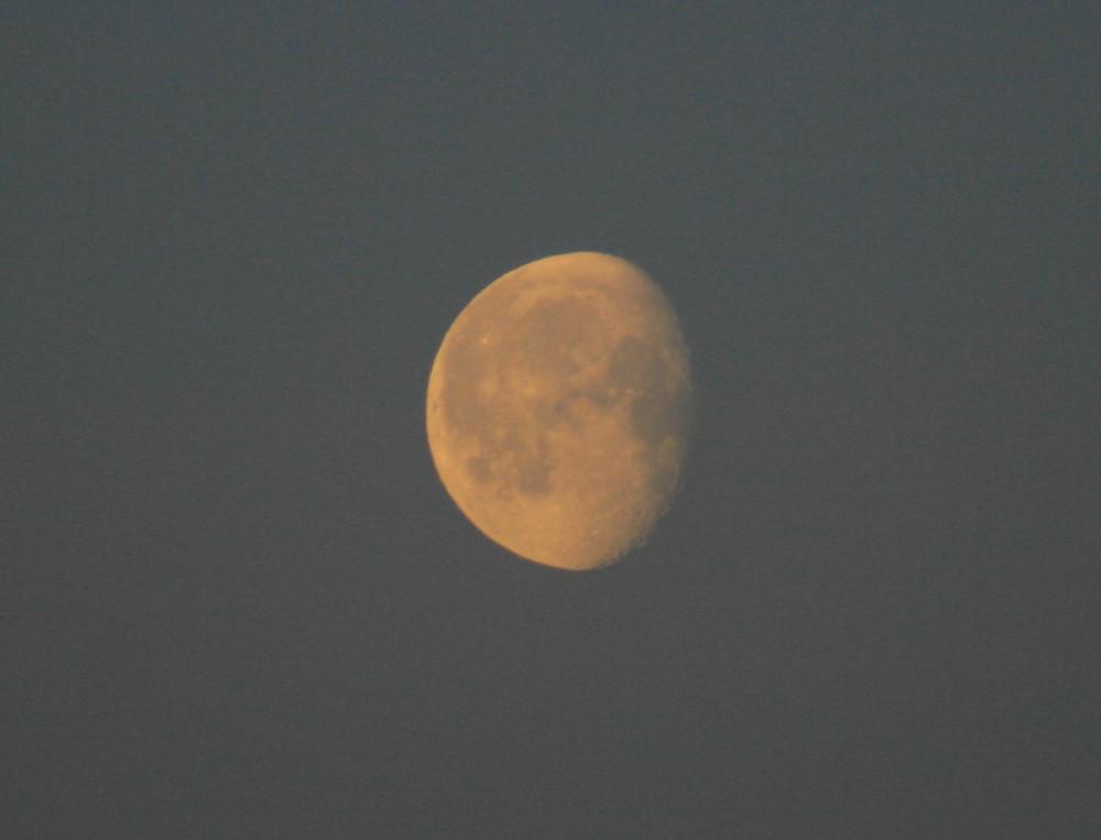 A Sunny Moon.... :-)
