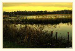""" a sunset on the Wijvenheide (2) """