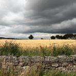 a touch of SCOTLAND - Landscape