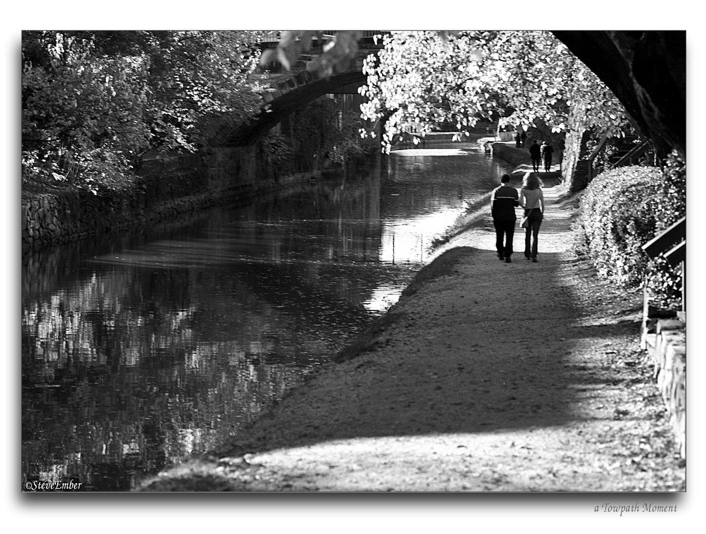 a Towpath Moment