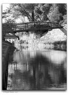 a Towpath Moment - No. 2