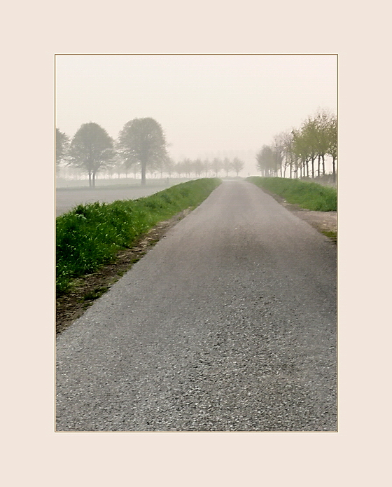 a view from Orjanedijk during a foggy day