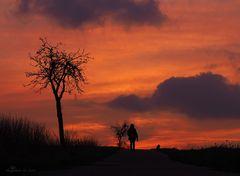 A walk.....