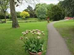 A walk through the gardens