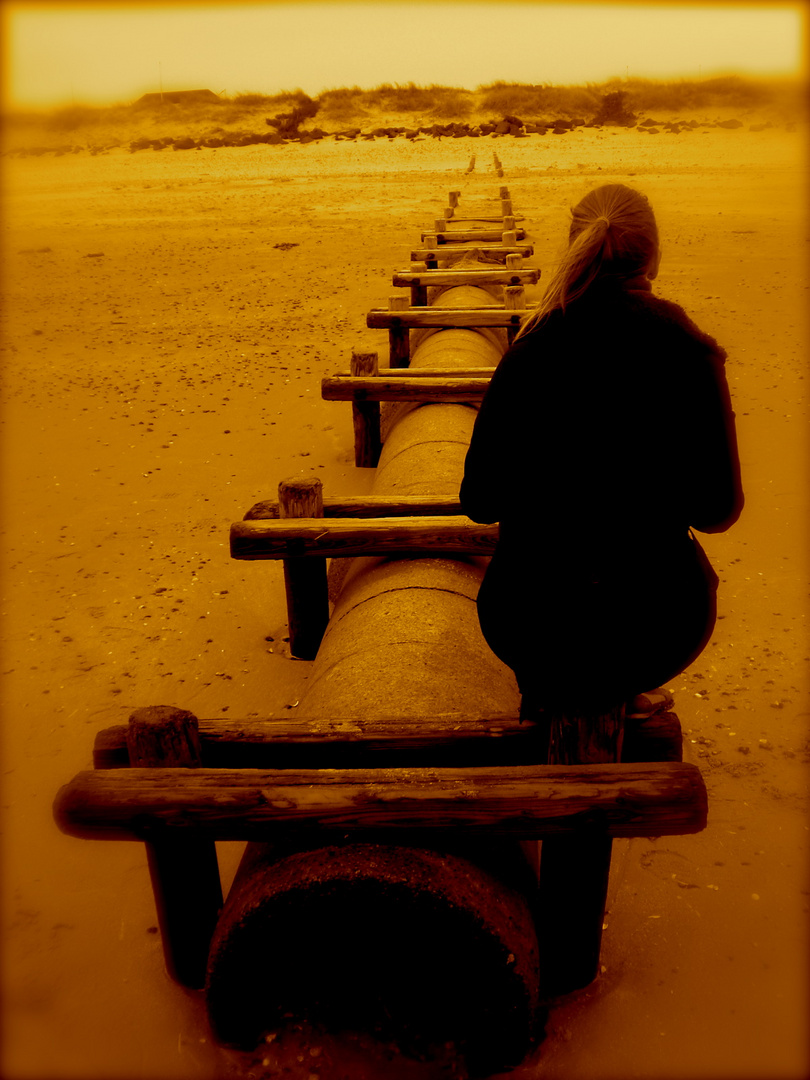 a way to take, Un camino a seguir