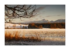 A Wintry Sunset - Wintersonnenuntergang