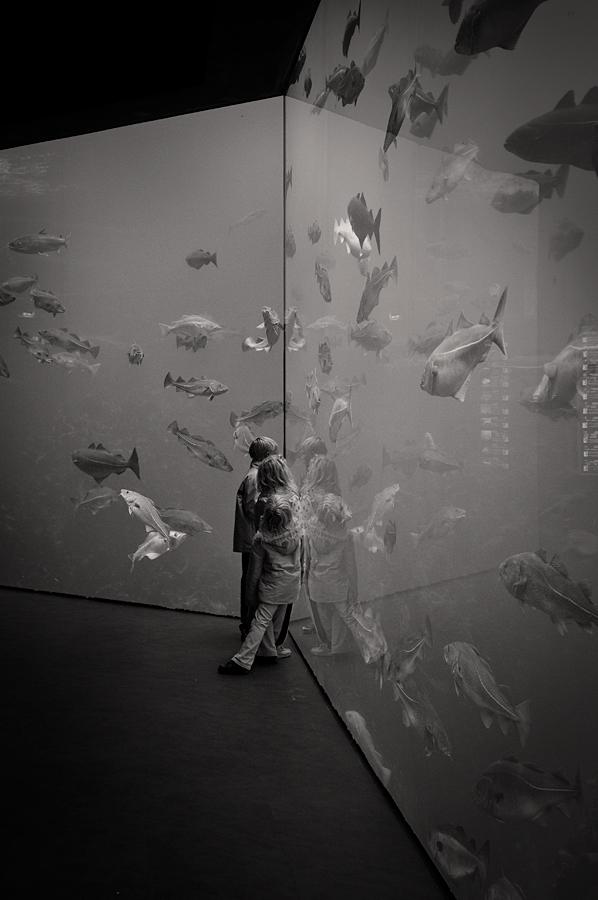 A world of wonders