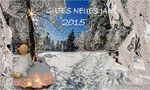 Alles Gute für das neue Jahr 2015 von Piroska Baetz