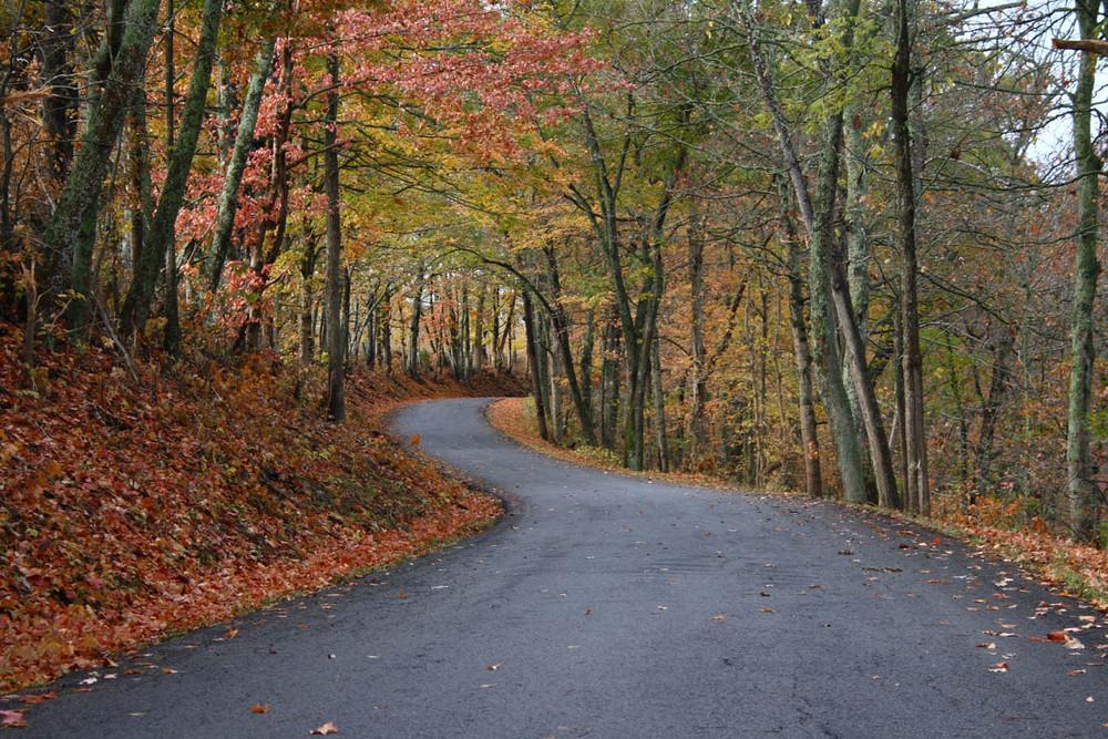 Aaron's Run in fall colors