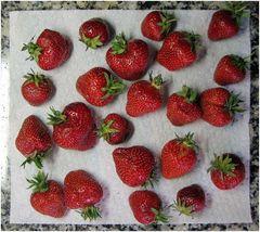 Ab in die Erdbeerbowle!