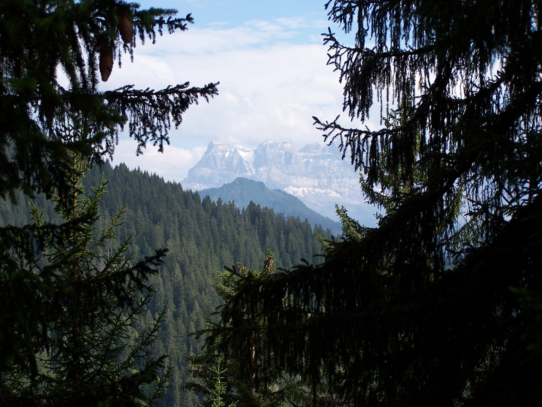 abandante montagne