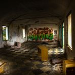 Abandonados (3)